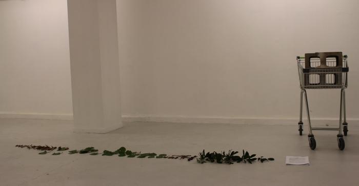 'collection cultures/the urban maori: an ethnography' Hana Aoake (pre performance)